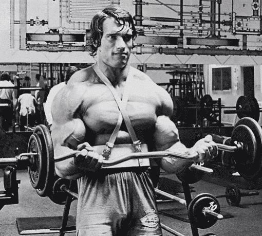 arm blaster warrior gear - programme entraînement biceps