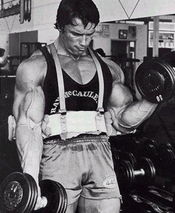 armblaster warrior gear - accessoire musculation bodybuilding