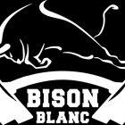 logo bison blanc didier michelon